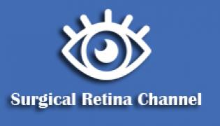 Surgical Retina Channel